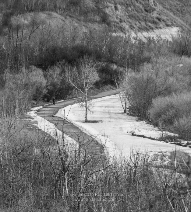 Path in Dawson Park