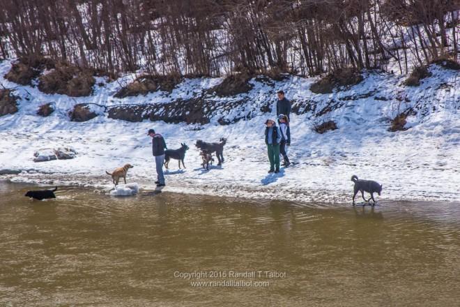 At the River Edge in April