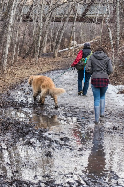 Wet/Muddy/Icy Trail