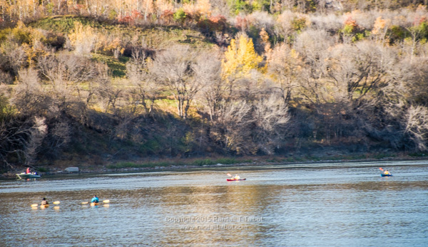 Rush Hour on the River